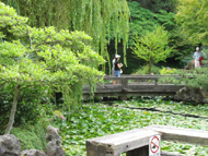 SunYatSen Garden