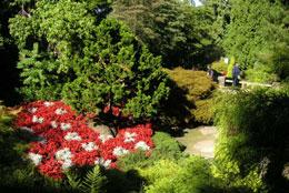 Queen Elizabeth Park 2