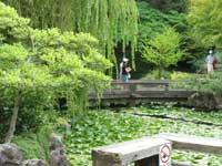 Dr. Sun Yat Sen Classical Garden